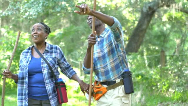 シニア アフリカ系アメリカ人のカップルが森の中でのハイキング - バードウォッチング点の映像素材/bロール
