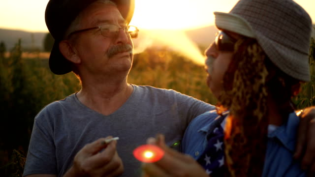 ledande amerikanska patrioter röka joint - hasch bildbanksvideor och videomaterial från bakom kulisserna