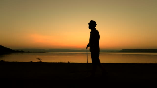 ledande asiatiska hane promenader med pinne i solnedgången nära i sjön, begreppet hälsosam, slowmotion - pensionärsmän bildbanksvideor och videomaterial från bakom kulisserna