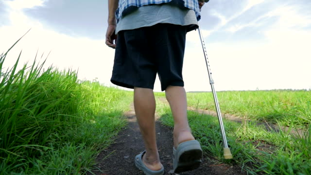 senior asian male walking with stick in the nature , concept healthy, slow motion - prateria zona erbosa video stock e b–roll