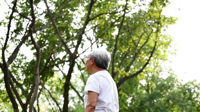 Senior Asian man doing physical exercise in a park. video