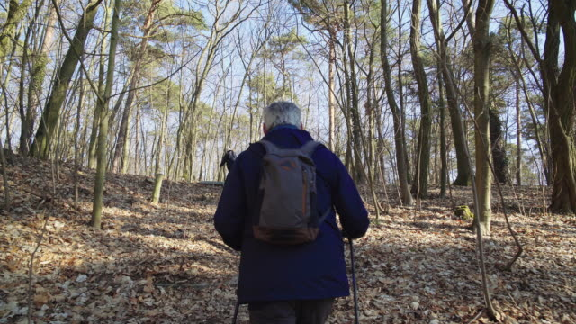 Senior backpackers hiking in forest during winter