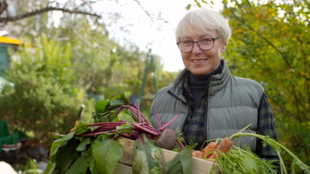vídeos de stock e filmes b-roll de senior caucasian woman posing with crate of fresh vegetables - engradado
