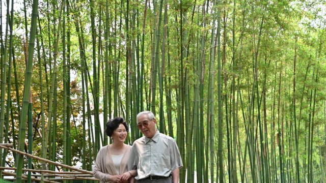 Senior Chinese couple walking through bamboo grove Affectionate Chinese seniors arm in arm walking through natural beuth of urban park in Shanghai life balance stock videos & royalty-free footage
