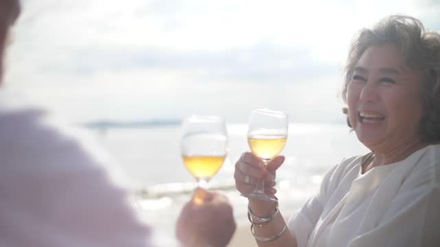 シニアクーペはビーチでワインをリラックスして楽しむ - disruptagingcollection点の映像素材/bロール