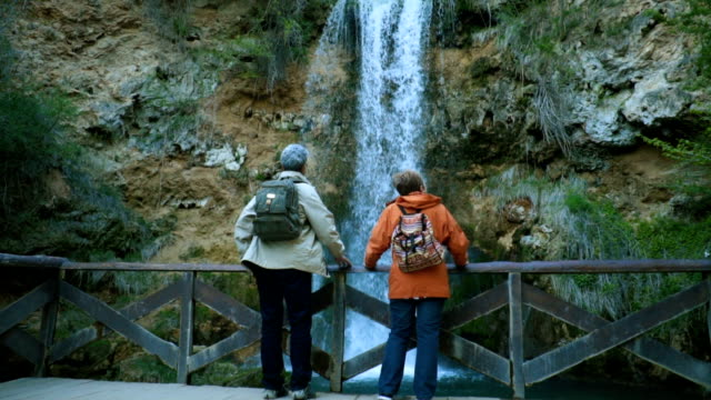 senior couple admiring beautiful waterfall - coppia anziana video stock e b–roll