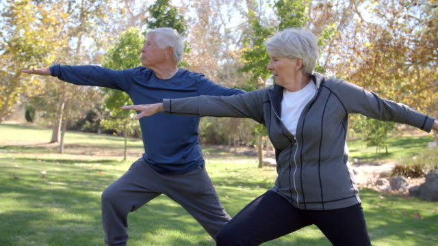 Senior Couple Doing Yoga Exercises Together In Park