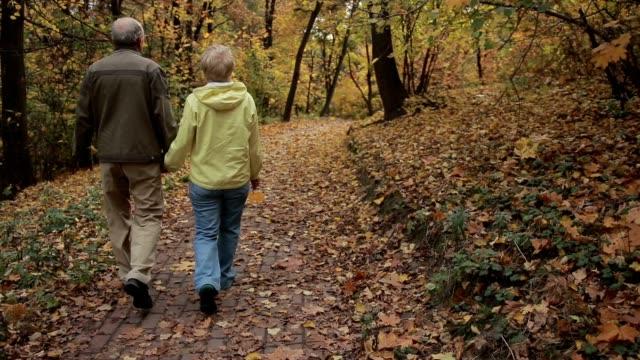 vídeos y material grabado en eventos de stock de senior pareja goza de romántico paseo en el parque otoño - espalda partes del cuerpo