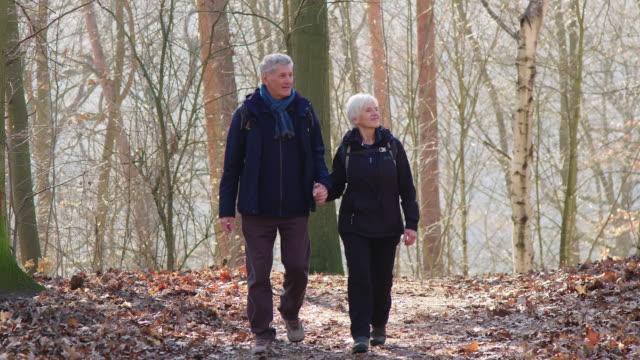 冬の間にウッドランドでハイキングするシニアカップル - 老夫婦点の映像素材/bロール