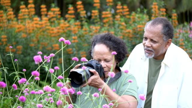 coppia senior nel parco, fotografando fiori - 60 69 anni video stock e b–roll