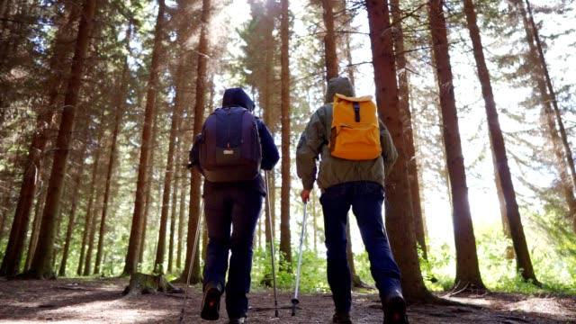stockvideo's en b-roll-footage met het hogere paar wandelt in het bos - er even tussenuit
