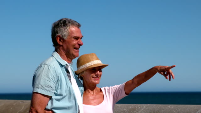stockvideo's en b-roll-footage met senior couple looking at something from the pier - hand pointing