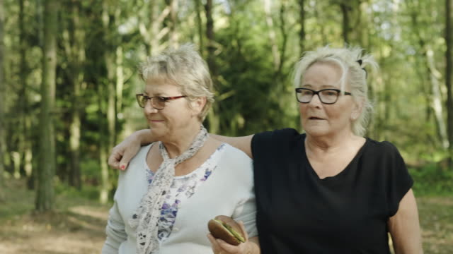 Senior Couple looking for Edible Mushrooms in the Forest A Swedish senior couple are walking in the forest on an autumn day, looking for edible mushrooms. lesbian stock videos & royalty-free footage