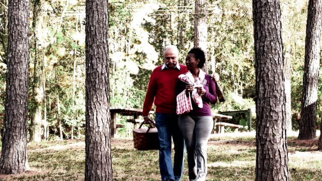 Senior couple out for a picnic video