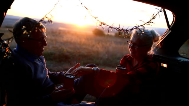 シニア カップル アウトドア車 - 老夫婦点の映像素材/bロール