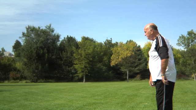 Senior couple playing with ball at park video