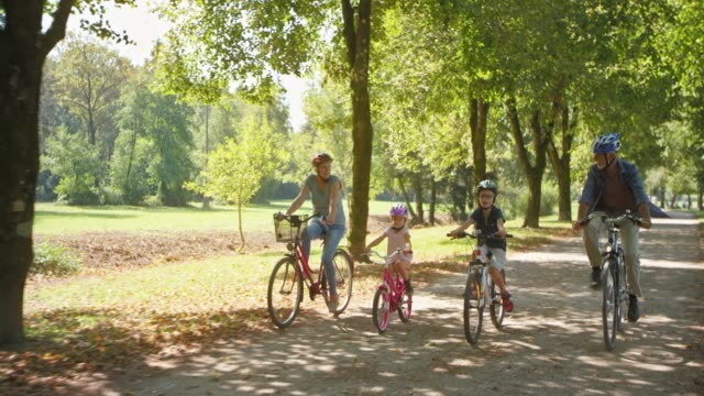 Senior couple riding bikes in the sunny parks with their grandchildren