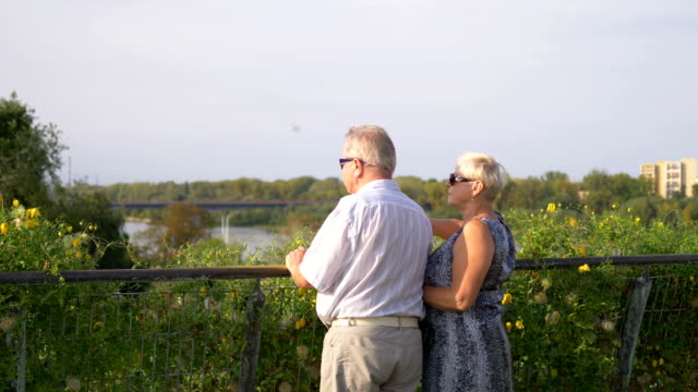 senior couple standing at handrail, observing the view and one of them pointing with a finger in 4k slow motion 60fps - balaustrata video stock e b–roll