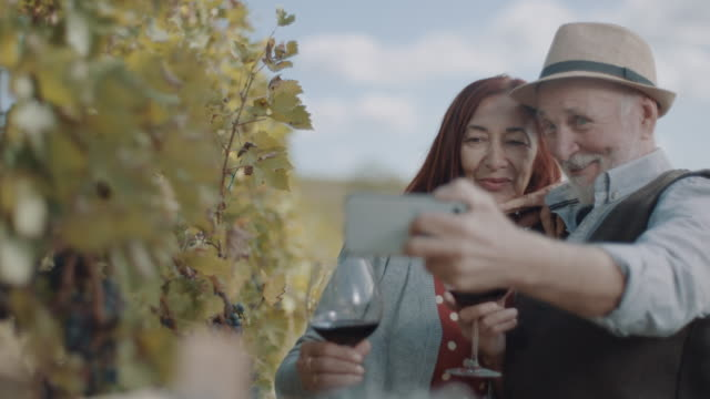 vídeos de stock e filmes b-roll de senior couple taking selfie - uva shiraz
