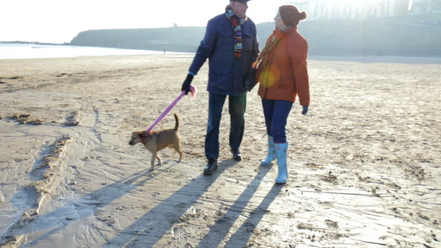 senior couple walking along the beach with the dog - coppia anziana video stock e b–roll