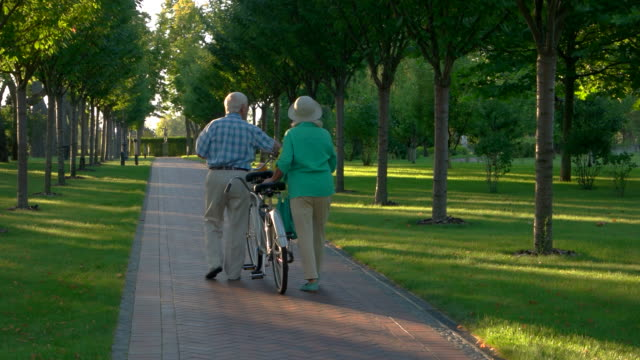 Senior couple walking with bicycle. video