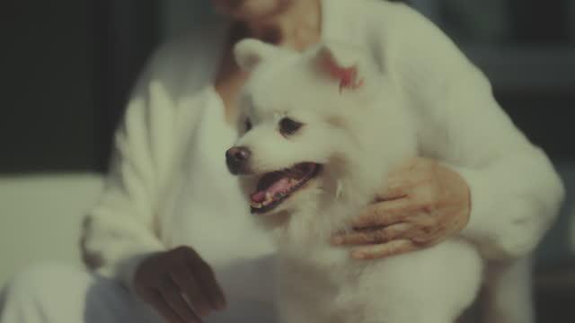 Senior female volunteer , Animal Rescue