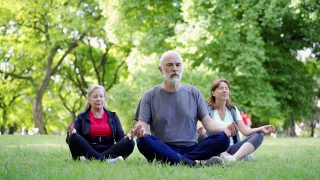 senior friends meditating in park - posizione corretta video stock e b–roll