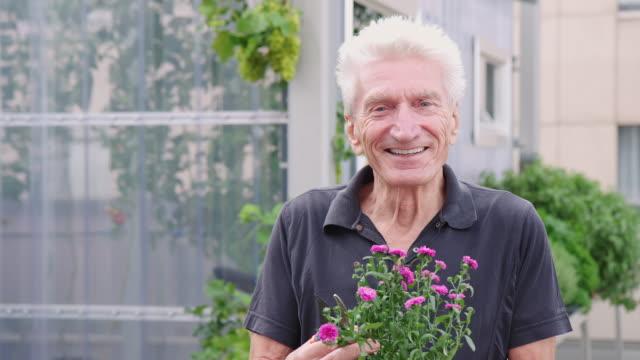 senior gardener with a flower plant - gardening video stock e b–roll