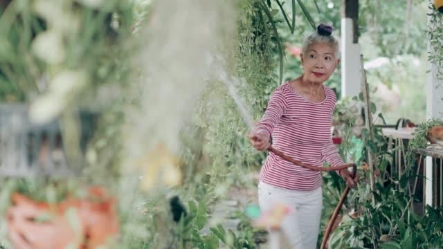 植物ストックvdoに水をやるシニアヒップスターの女性 - disruptagingcollection点の映像素材/bロール