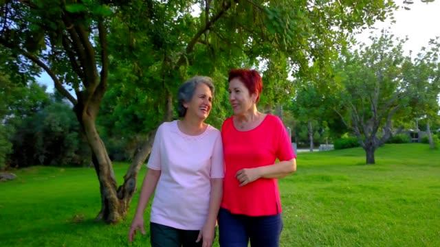 senior lgbtq+ couple walking on the park - 50 54 lata filmów i materiałów b-roll