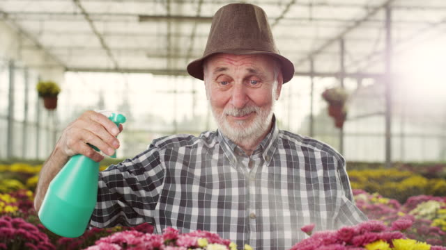 Senior male florist video
