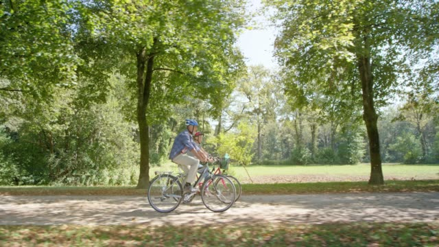 ts senior man and woman cycling in the park through an avenue of trees on a sunny day - 60 64 года стоковые видео и кадры b-roll