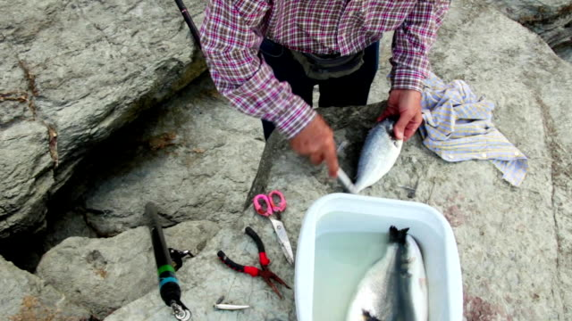 Senior man hands removing fish scales with scaler