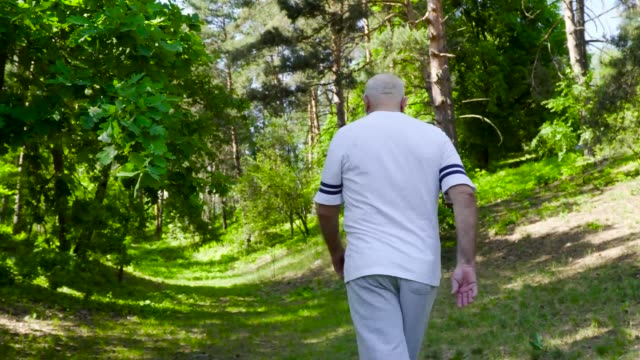 Senior man has a knee pain during sport walking in the forest Senior man has a knee pain during sport walking in summer forest. Active man has a healthy lifestyle and walking at the nature. pain stock videos & royalty-free footage