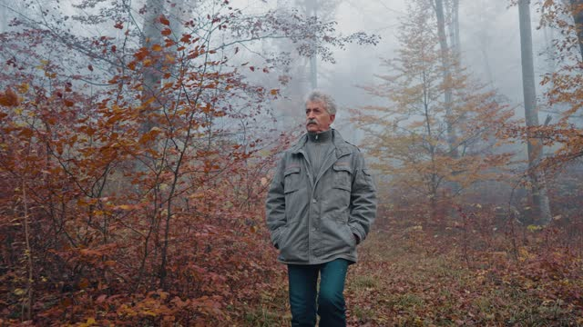 秋の散歩の先輩 - disruptagingcollection点の映像素材/bロール