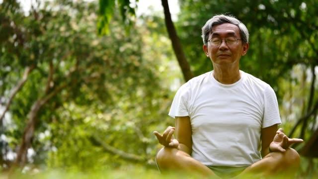 äldre mannen i lotus pose sitter på gräset i en park. begreppet lugn och meditation. - zen bildbanksvideor och videomaterial från bakom kulisserna