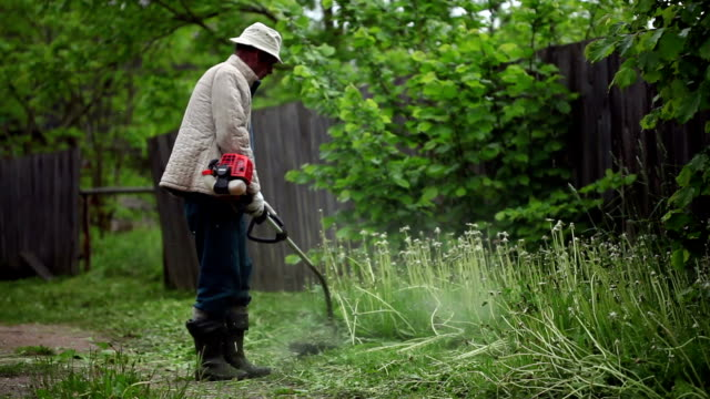 Senior man mowing the grass with trimmer video