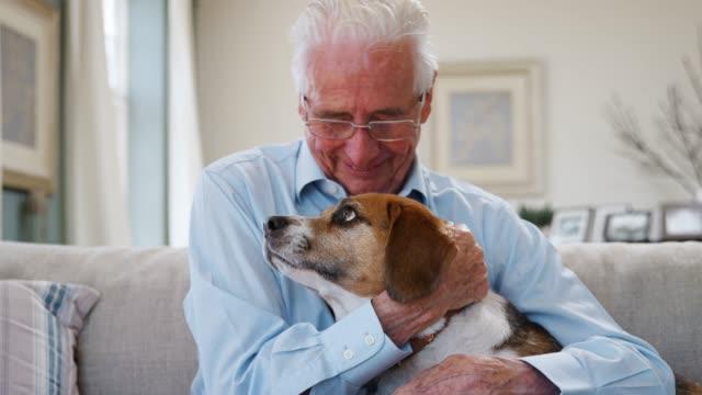 vídeos de stock e filmes b-roll de senior man sitting on sofa at home with pet beagle dog - happy dog