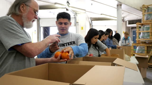 senior man sorting donation boxes with diverse group of food bank volunteers - birlik stok videoları ve detay görüntü çekimi