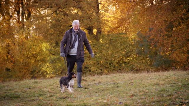 senior man tar hund för walk i höstlandskap - senior walking bildbanksvideor och videomaterial från bakom kulisserna