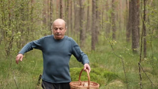 Senior man walking and picking mushrooms in forest. Suddenly he falls down because of leg injury Senior man walking and picking mushrooms in forest. Suddenly he falls down because of leg injury. 4k video tripping falling stock videos & royalty-free footage