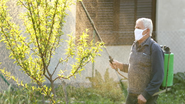 Senior man working in a orchard, spraying herbicide with crop sprayer - vídeo