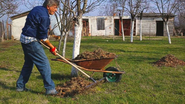 Senior man working in the garden video