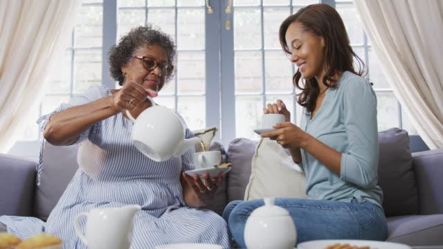 senior gemischte rasse frau trinken tee mit ihrer tochter in sozialen entsung - vollzeit elternteil stock-videos und b-roll-filmmaterial