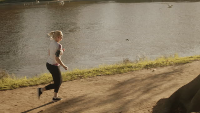 Senior runner in Melbourne park (slow motion) Authentic series of senior fitness in Melbourne 50 59 years stock videos & royalty-free footage