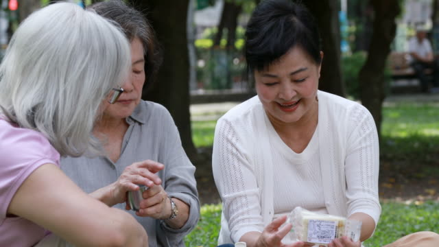 Senior Taiwanese Ladies Having Lunch At The Park