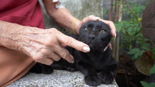 Senior woman carry a balck cat with love.