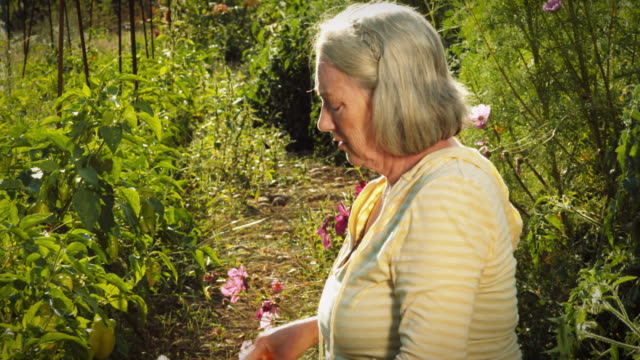 Senior woman gardener has head and neck pains. video