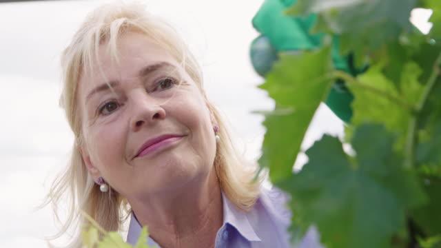 senior woman gardener working in greenhouse - gardening video stock e b–roll
