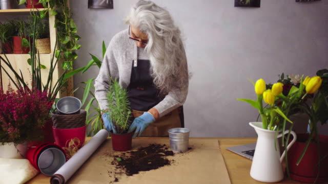 senior woman like her plants - gardening video stock e b–roll